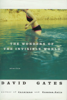 Image for The Wonders of The Invisible World
