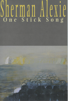 Image for One Stick Song