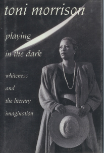Image for Playing in the Dark