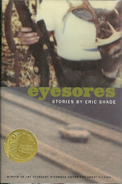 Image for Eyesores: Stories