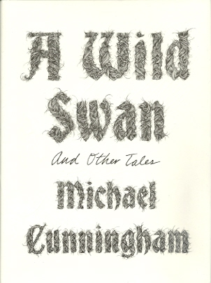 Image for A Wild Swan and Other Tales
