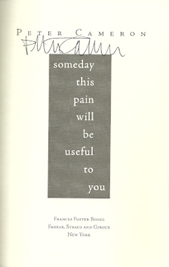 Image for Someday This Pain Will Be Useful to You: A Novel