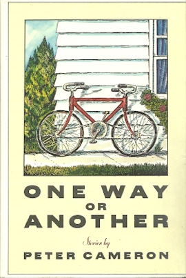 Image for One Way or Another: Stories