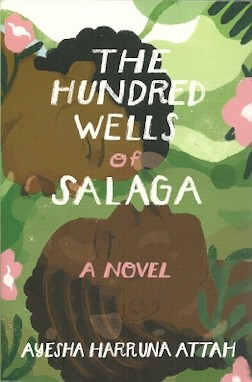Image for The Hundred Wells of Salaga