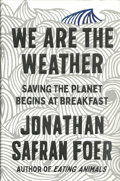 Image for We Are the Weather