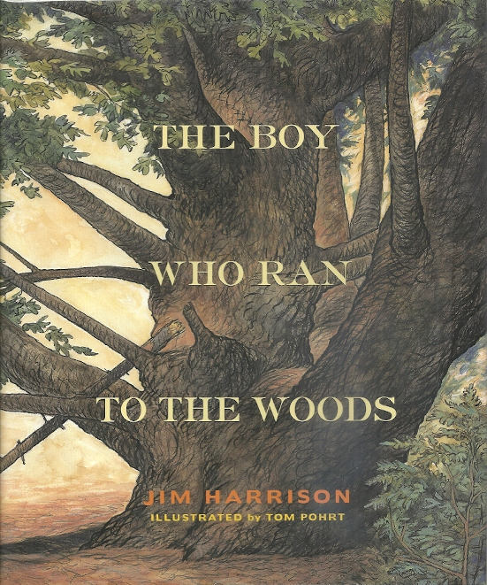 Image for The Boy Who Ran To The Woods