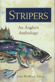 In Search of the Striped Bass.  [Waldman, John - Editor. Stripers, An Angler's Anthology] , Boyle, T. Coraghessan